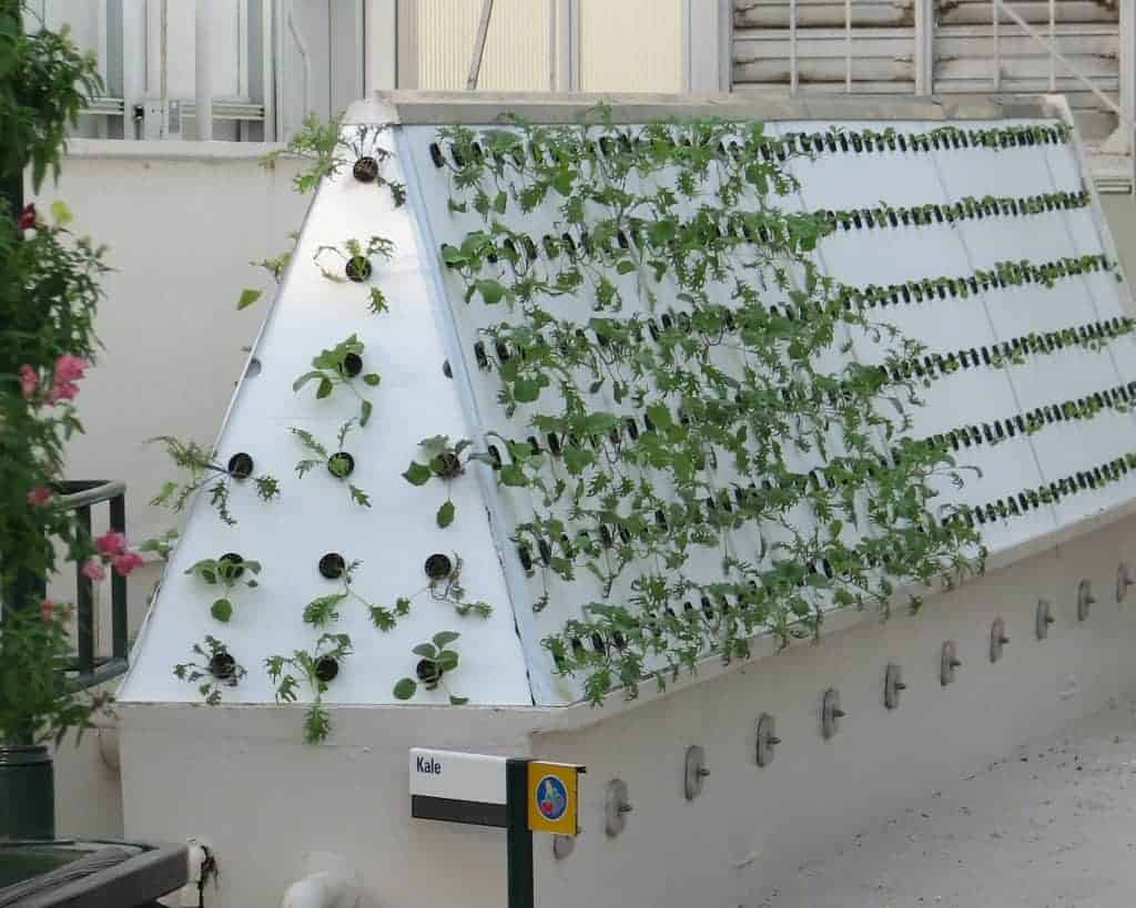 How To Build Your Own Aeroponic System At Home