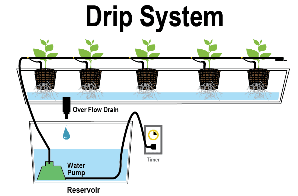 Best hydroponic drip irrigation system guide for 2018 for Garden design generator