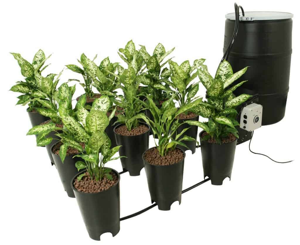 Ebb And Flow Hydroponics Gardening System Explained