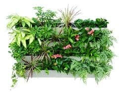 Bloom Wall Vertical Gardening Kit Planter From Savvy Grow