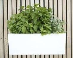 Vertical Garden PlantersLiving Wall Planters Vertical Garden Kit