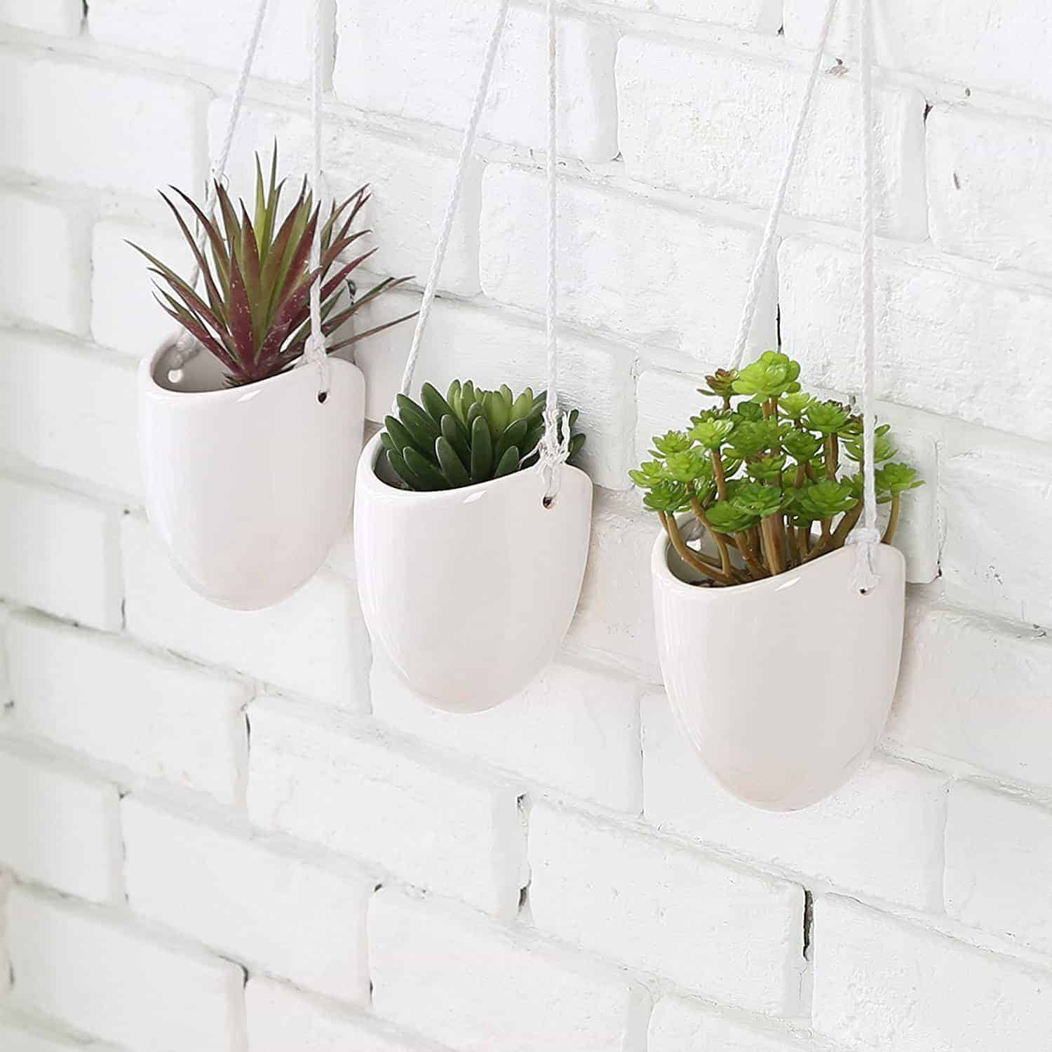 Best Succulent Wall Planters Vertical Garden Kit