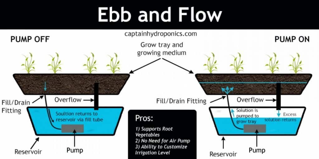 Ebb and Flow Hydroponics Gardening System Explained 1