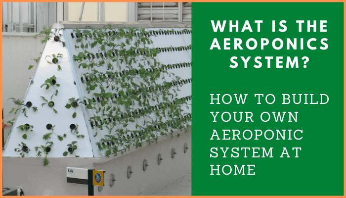 What is the Aeroponics System