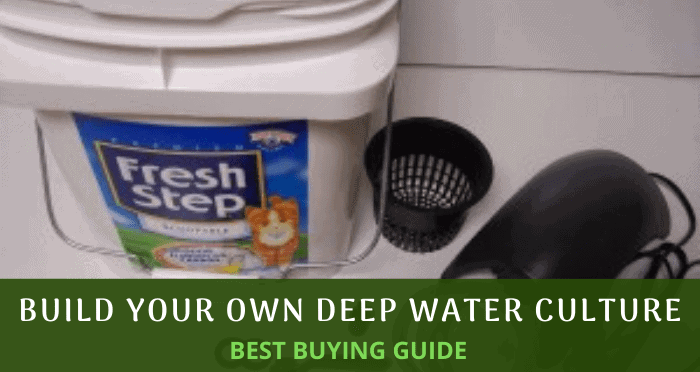 Build Your Own Deep Water Culture