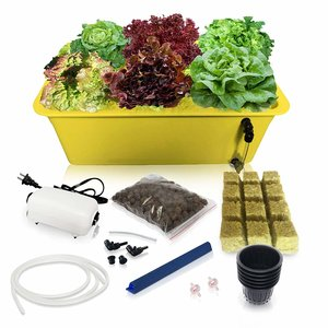DWC Hydroponic System Growing Kit