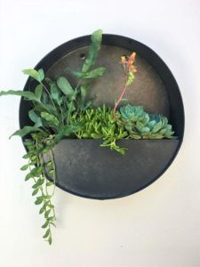 Round Hanging Wall Vase Planter for Succulents