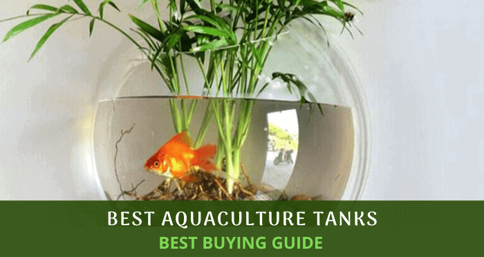 Best Aquaculture Tanks