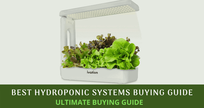 Best Hydroponic Systems Buying Guide