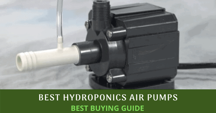 Best Hydroponics Air Pumps