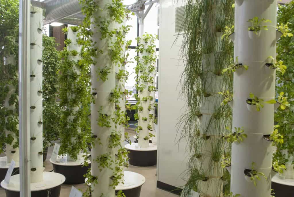 aeroponic tower garden growing vegetables and herbs